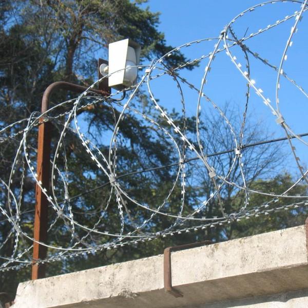 СББ АКЛ на бетонном заборе