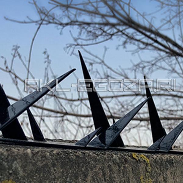 колючая лента с шипами на бетонном заборе