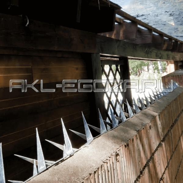 надежная и эффективная защита периметра домовладений и дачных  участков - шипы от производителя
